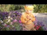 «Сынок» под музыку Песенка для  малышей))) - И самые большие слоники, и самые маленькие гномики. Picrolla